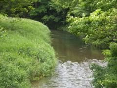 150311陸前高田の川02