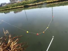 151029マブナ釣り09